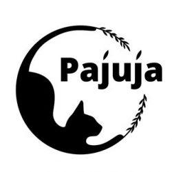 Pajuja розплідник кішок